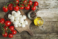 Mozzarella cheese with tomatoes and olive oil Royalty Free Stock Images