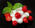 Mozzarella di Bufala, fresh cheese, italian dairy product. Royalty Free Stock Photo