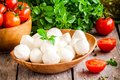 Mozzarella organic cherry tomatoes and fresh basil on a rustic wooden background Stock Image