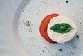 Mozzarella with tomato and basil Stock Photos