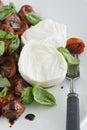 Mozzarella and Tomato Salad Royalty Free Stock Photo