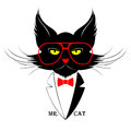 Mr cat vector illustration of black dressed in dinner jacket Stock Photography