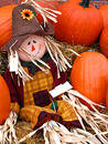 Mr. Scarecrow Stock Photos