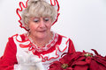 Mrs claus attends to plant santa looking after a christmas poinsettia Stock Image
