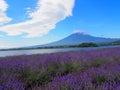 Mt фу зи и  аван а на береге озера kawaguchi Стоковые Фотографии RF