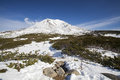 Mt asahidake snow covered mountain daisetsusan national park hokkaido japan Royalty Free Stock Photo