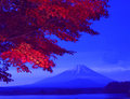Mt fuji-170 Royalty Free Stock Photo