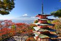 Mt fuji in autumn with fall colors japan Royalty Free Stock Photo