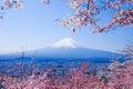 Mt. Fuji With Cherry Blossom (Sakura )in Spring, Fujiyoshida, Japan Royalty Free Stock Photo