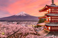 Mt. Fuji and Pagoda in Spring