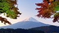 Mt fuji panorama of with fall colors Stock Images