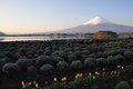 Mt fujiyama japan view of fuji at kawaguchi lake Royalty Free Stock Image