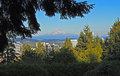 Mt hood above portland oregon viewed from washington park on a summer evening Royalty Free Stock Photos