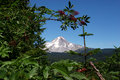 Mt. Hood in summer Stock Photo