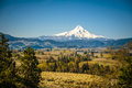 Mt hood vally and apple orchards spring in oregon Stock Photography