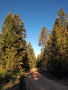 Mt road early morning and blue sky shot Royalty Free Stock Photography