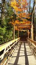 Mt tom reservation newly built bridge with fall scenery on a trail in holyoke ma Stock Photo