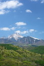 Mt. Yatsugatake of fresh green Stock Images