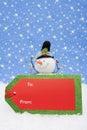 Muñeco de nieve con la etiqueta del regalo Imágenes de archivo libres de regalías