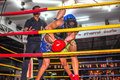 Muay thai competition boxing match in the thapae boxing stadium in chiang mai thailand Royalty Free Stock Photo