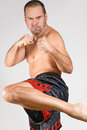 Muay Thai fighter Stock Image