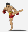 Muay thai martial art vector Stock Photo