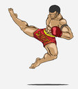 Muay thai martial art vector Royalty Free Stock Photo