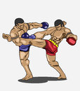 Muay thai martial art vector Royalty Free Stock Photos