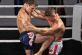 Muay thai match in ring two caucasian fighters lock up the during and one delivers powerful knee to the stomach Stock Image