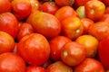 Mucchio dei pomodori da un mercato Immagini Stock