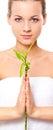 Muchacha rubia que sostiene el bambú Imagenes de archivo