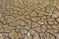 Mud cracks also known as desiccation or are sedimentary structures formed as muddy sedi ment dries and contracts Royalty Free Stock Photos