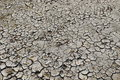 Mud cracks also known as desiccation or are sedimentary structures formed as muddy sediment dries and contracts Royalty Free Stock Photography