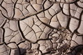 Mud Cracks, Dry Earth Royalty Free Stock Photo