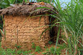Mud hut home a small among tropical jungle grasses Stock Photos