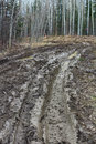 Mud ruts into a hunting camp