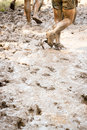 Mud trail run group of runners on a muddy the image orientation is vertical and there is copy space Royalty Free Stock Photography