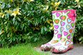 Muddy funky wellingtons Royalty Free Stock Photo