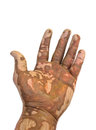 Muddy hands Royalty Free Stock Photos