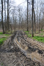 Muddy offroad track in the forest Royalty Free Stock Photos