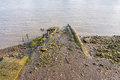 Muddy riverbank at low tide on the River Thames Royalty Free Stock Photo