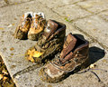 Muddy shoes Royalty Free Stock Photo