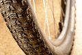Muddy tire of a mountain bicycle Stock Images