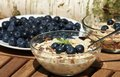 Muesli healthy cereal with fresh blueberries Royalty Free Stock Photos