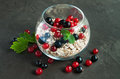 Muesli with red and black currant Royalty Free Stock Photo