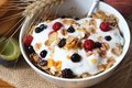 Muesli with yogurt,healthy breakfast rich in fiber Royalty Free Stock Photo