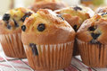 Muffin ai mirtilli Immagine Stock