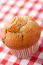 Muffin on checkered tablecloth Stock Photography