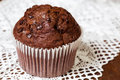 Muffin chocolate on lacy dolly Royalty Free Stock Photo