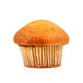 Muffin on a white background Royalty Free Stock Image